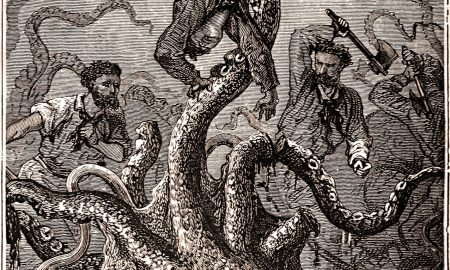 Scientists have deciphered the genome of an ancient giant squid