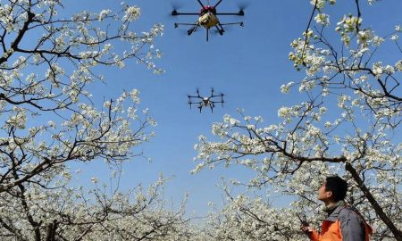 Drones scold Chinese residents without masks as coronavirus