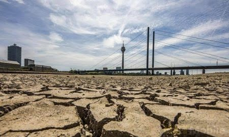 Scientists have determined the degree of preparedness of mankind for a climate catastrophe