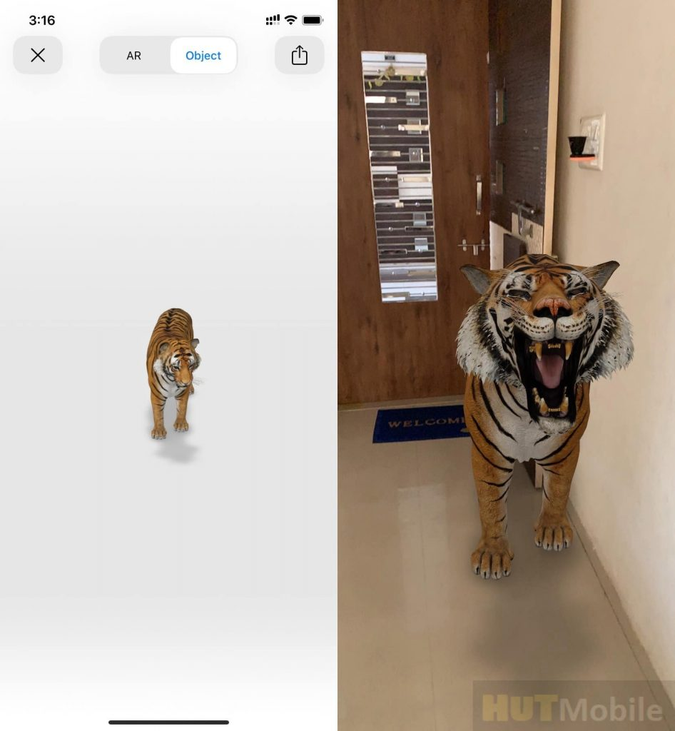 How to use Google 3D animals on iPhone News 3D Google Features News