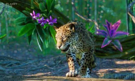 Llamas Jaguars Anteaters and More: Planet Zoo Preparing South America Pack Expansion
