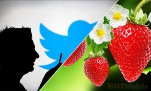 Twitter agenda: Strawberry became the agenda on social media! Here's why