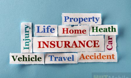 Canadian Life Insurance Overview