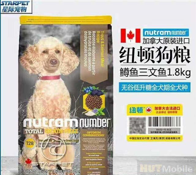 best dog food for standard poodles