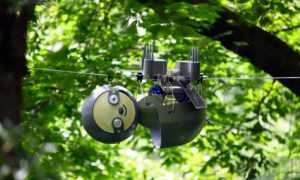 A sloth robot will observe nature for years PHOTO