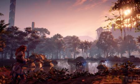 Pc version of horizon zero Download Full game: Horizon: Zero Dawn - evidence of sloppy PC porting?