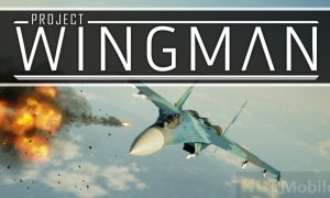 Project Wingman Best Working Mod Full Data Version Pack Download 2020